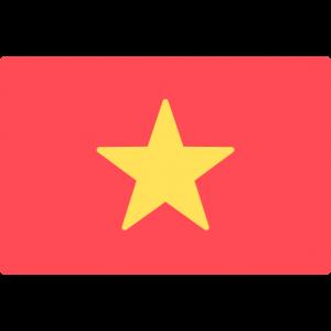 RECUPERO CREDITI VIETNAM