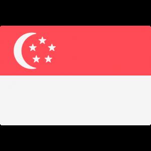 RECUPERO CREDITI SINGAPORE